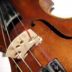 Poučevanje violine
